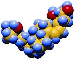 Quanto menores os níveis de vitamina D, mais baixos os níveis de hemoglobina no sangue e mais elevado é o risco de anemia.[Imagem: FRL/UCR]