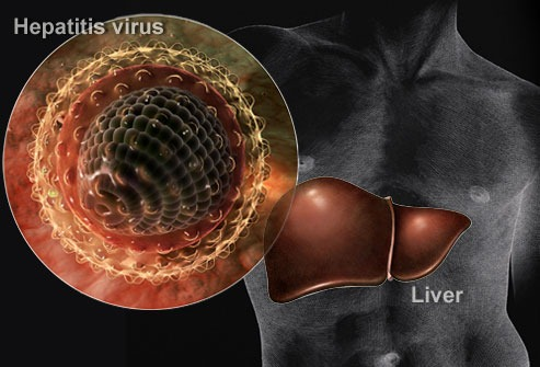 ahepatitis_virus_collage